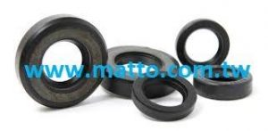 Oil Seals RVI